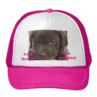 I'm a sucker for puppies Hat