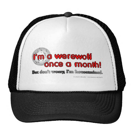 I'm a werewolf once a month! But don't worry... Mesh Hats