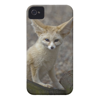 I'm All Ears iPhone 4 Case-Mate Case