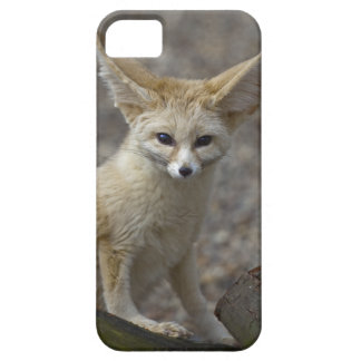 I'm All Ears iPhone 5 Case-Mate Case
