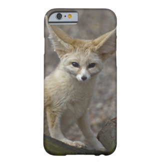 I'm All Ears iPhone 6 Case