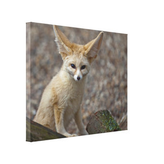 I'm All Ears Wrapped Canvas Print