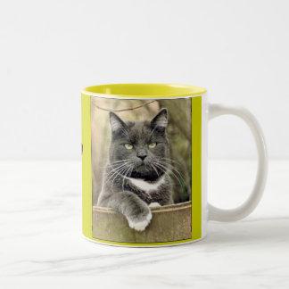 I'm Always On The Fence! Two-Tone Coffee Mug