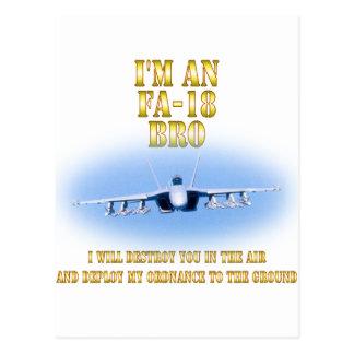 I'm an FA-18 bro Postcard