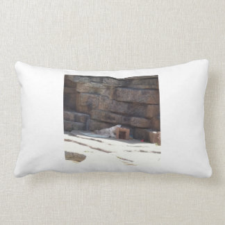 I'm Beary Tired Throw Pillow