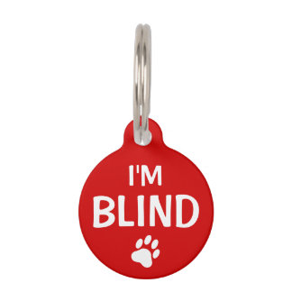 I'm Blind Text With Custom Name And Number Pet Name Tag