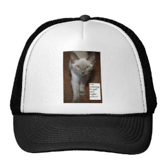 I'm Coming To Get You Right Now Trucker Hat