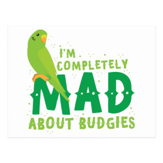 I'm completely mad about budgies postcard
