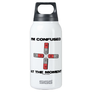 I'm Confused At The Moment (Quadrupole Moment) Insulated Water Bottle