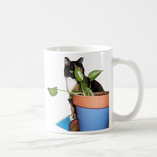 I'm Cool Coffee Mug