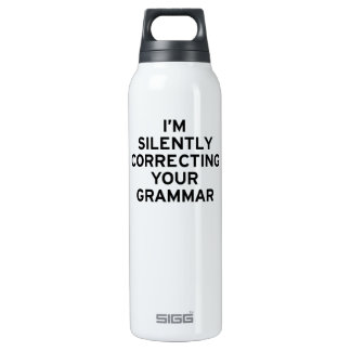 I'm Correcting Grammar 16 Oz Insulated SIGG Thermos Water Bottle