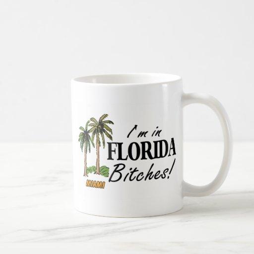 Im en las perras de la Florida Taza Básica Blanca