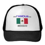 I'm Famous In MEXICO Trucker Hat