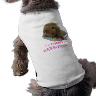 I'm Famous In The Rabbit Community  - Pink Shirt