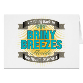 I'm Going Back To (Briny Breezes) Card