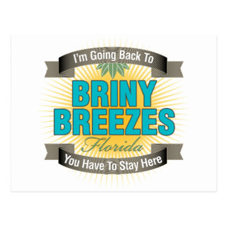 I'm Going Back To (Briny Breezes) Postcard
