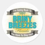 I'm Going Back To (Briny Breezes) Round Sticker