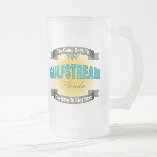 I'm Going Back To (Gulfstream) Mugs