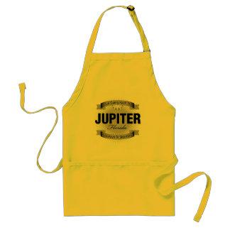 I'm Going Back To (Jupiter) Adult Apron