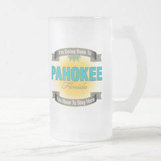 I'm Going Back To (Pahokee) Frosted Glass Beer Mug