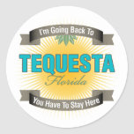 I'm Going Back To (Tequesta) Stickers