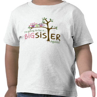 I'm going to be a BIG SISTER AGAIN! Tshirts