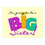I'm Going To Be A Big Sister Tshirts Postcard