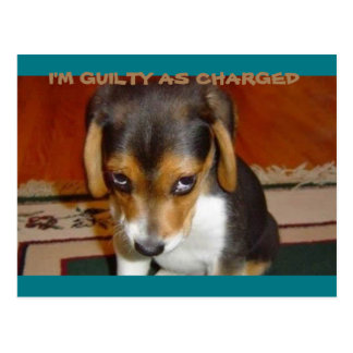 I'M GUILTY AS CHARGED POSTCARD