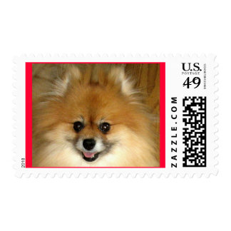 I'm having so much fun! stamps