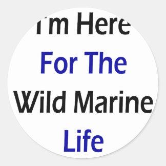 I'm Here For The Wild Marine Life Sticker