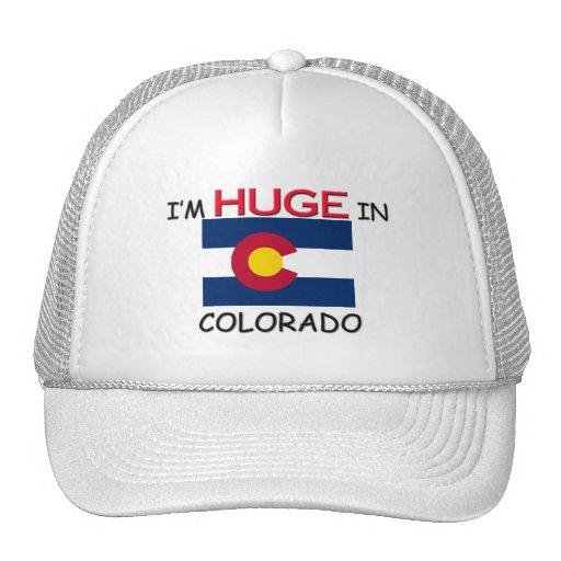 I'm HUGE In COLORADO Trucker Hats