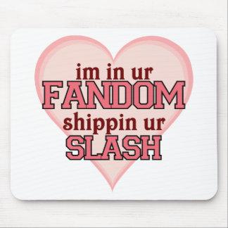 I'm In Ur Fandom Shippin' Ur Slash Mouse Pad