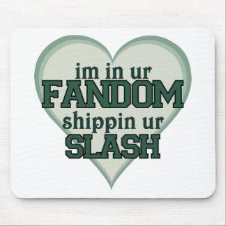 I'm In Ur Fandom Shippin Ur Slash Mouse Pad