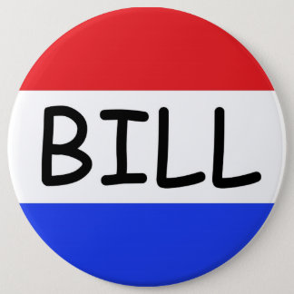 I'm Just a Bill (from Capitol Hill) button