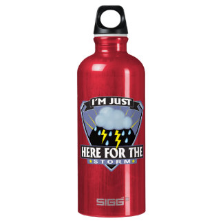 Im Just Here For The Storm SIGG Traveler 0.6L Water Bottle