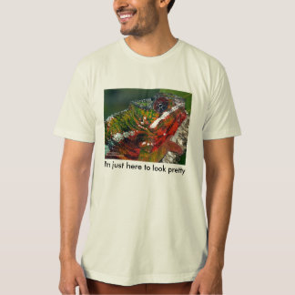 I'm just here to look pretty - chameleon T-Shirt