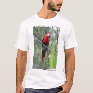 I'm just here to look pretty - macaw T-Shirt
