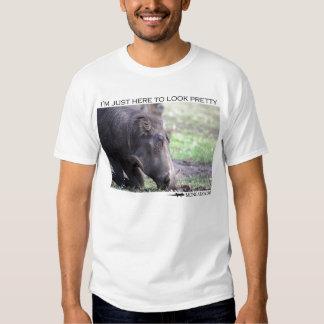 I'm just here to look pretty - warthog tshirt