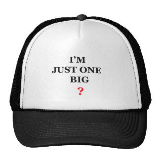 I'm Just One Big ? Trucker Hat