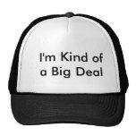 I'm Kind of a Big Deal - hat