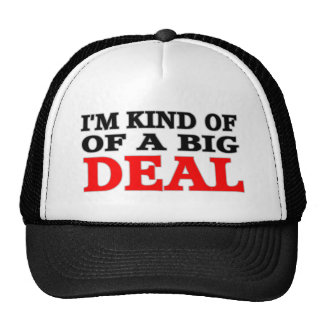 IM KIND OF A BIG DEAL TRUCKER HAT
