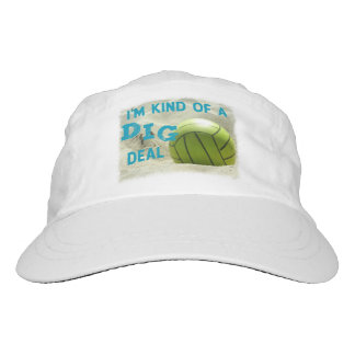 I'm Kind of a DIG Deal Headsweats Hat