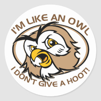 Im Like An Owl I Dont Give A Hoot Funny Saying Classic Round Sticker