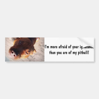 I'm more afraid of your ignorance bumper sticker