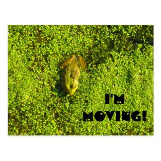 I'm Moving! Change of address postcard