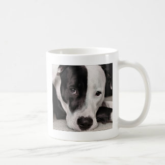 I'm not a killer classic white coffee mug