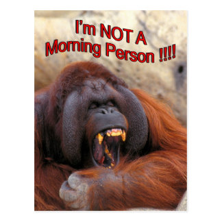 I'm Not A Morning Person !!! Postcard