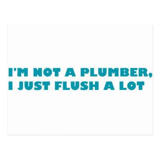 I'm not a plumber, I just flush a lot Postcard