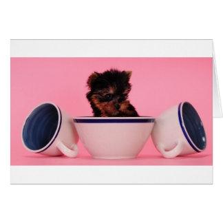 I'm not a Tea Cup Poodle! Card