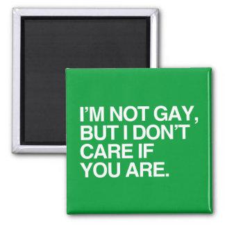 I'M NOT GAY BUT I DON'T CARE IF YOU ARE FRIDGE MAGNET